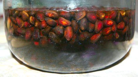 Самогон на очищенных кедровых орехах рецепт